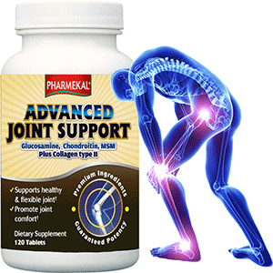 Advanced Joint Support  -  120db